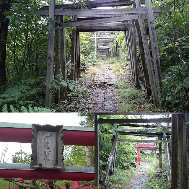 「 #二ツ岩大明神 」ずっと鳥居が続きますにゃ。  #パワースポット #一人旅 #佐渡島