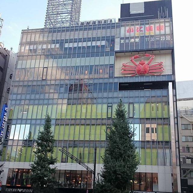 #新宿 の #かに道楽 ですな。動いてないみたい #さむねこさんぽ #散歩