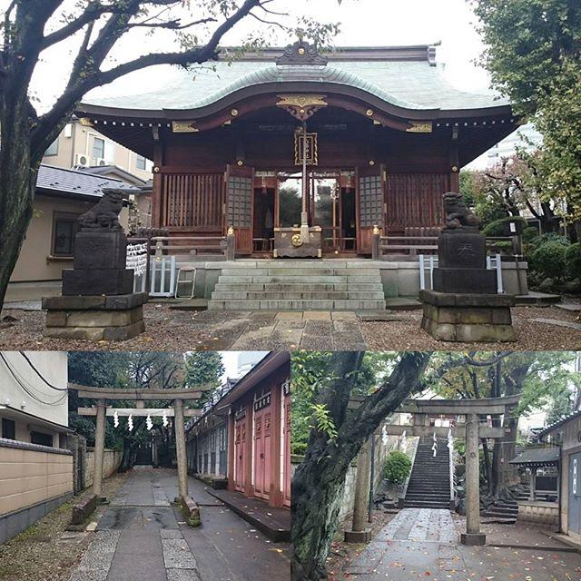 #山手線一周 #田端八幡神社 ですにゃ。  #出世系 の #パワースポット ですにゃ #散歩 #さむねこさんぽ