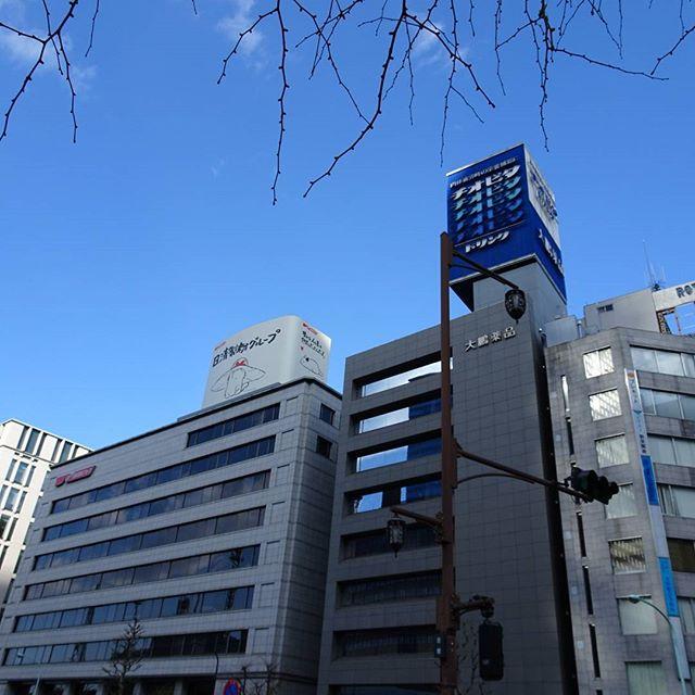#山手線一周 #チオビタ ですにゃ #東京散歩 #散歩