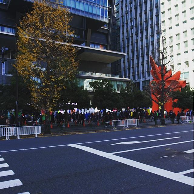 #東京散歩 なんか でっかい #モニター で #駅伝 具合を見るエリアかな?出店が気になるけど混みすぎだわ… #侍猫散歩 #散歩