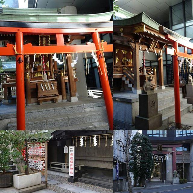 #東京散歩 #世継稲荷神社 #子宝 #後継者 の #パワースポット ですにゃ。#築土神社 の奥にあるね。侍猫さんつながりにご利益ありますように~ #東京 #散歩
