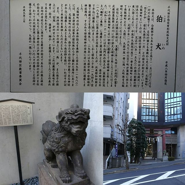 #東京散歩 #築土神社 の #狛犬 は都内で一番古いみたいね。 #神社 は #歴史 が残ってるから面白いよね #東京 #散歩 #tokyo #shrine