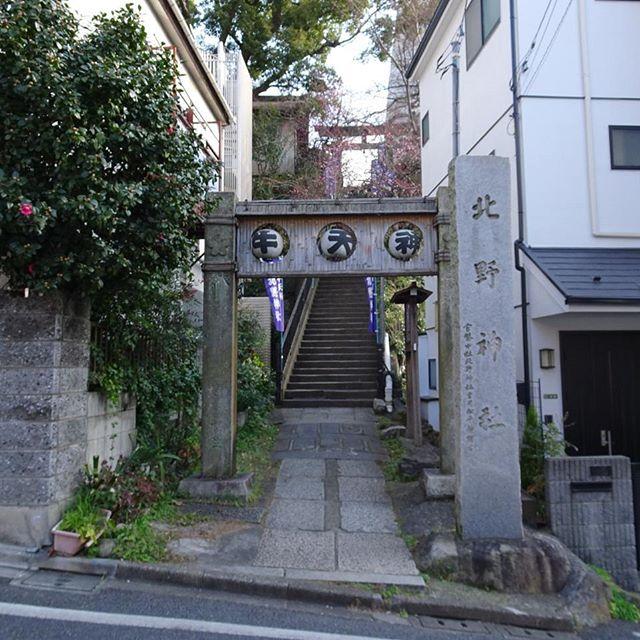 #東京散歩 #牛天神 #北野神社  #芸能 #開運 の #パワースポット ですにゃ #源頼朝 が関係してる神社ですにゃ