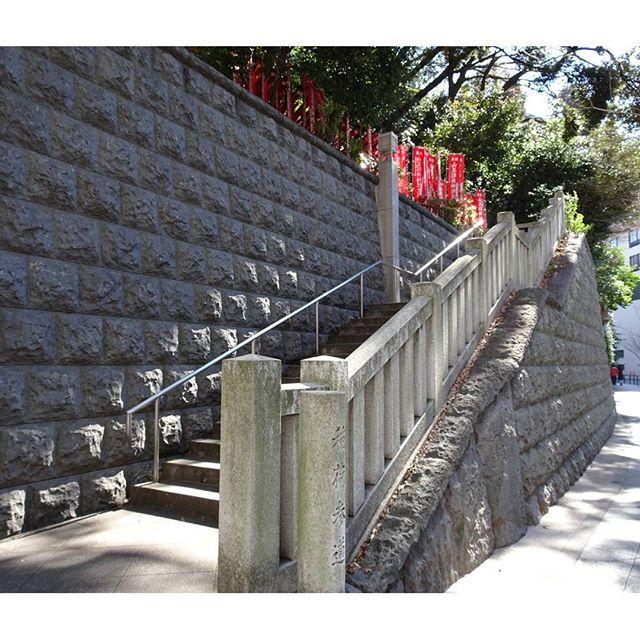 #東京散歩 #日枝神社 結構登らせるタイプの神社だよ! #東京 #散歩 #階段 #tokyo #shrine