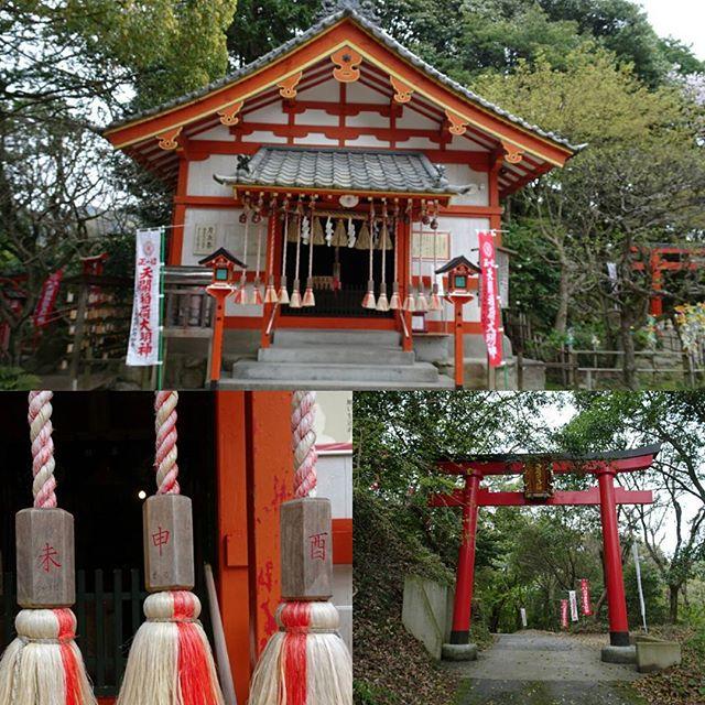 #天開稲荷神社 #干支 ごとに鈴のひもがあって間違えると #たらい が!? #開運 #パワースポット #旅猫
