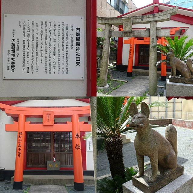 #内畑稲荷神社 #商売繁盛 の #パワースポット ですにゃ。個人的には小さい神社のが歴史感じて好きにゃ~