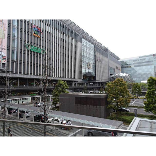 #博多駅 最終日ですにゃ! 今日は #大宰府 スタート! 直通バス使って #バス遠足 にゃ! おやつ買い忘れにゃ! #旅猫
