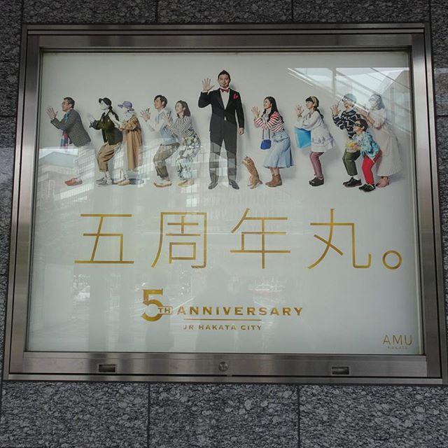 #AMU #博多シティ #五周年丸 にゃ!