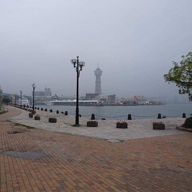 せっかく #福岡 きたから #博多ポートタワー も押さえときたいところにゃ!今日はすげぃ歩いとるにゃ