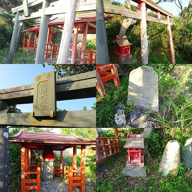 宮城県の猫島へ行ってみた!天王様エリアは鳥居が3つくらいあるかな?ここからの景色も綺麗ですが撮り忘れちゃった! #侍猫さんぽ #猫島