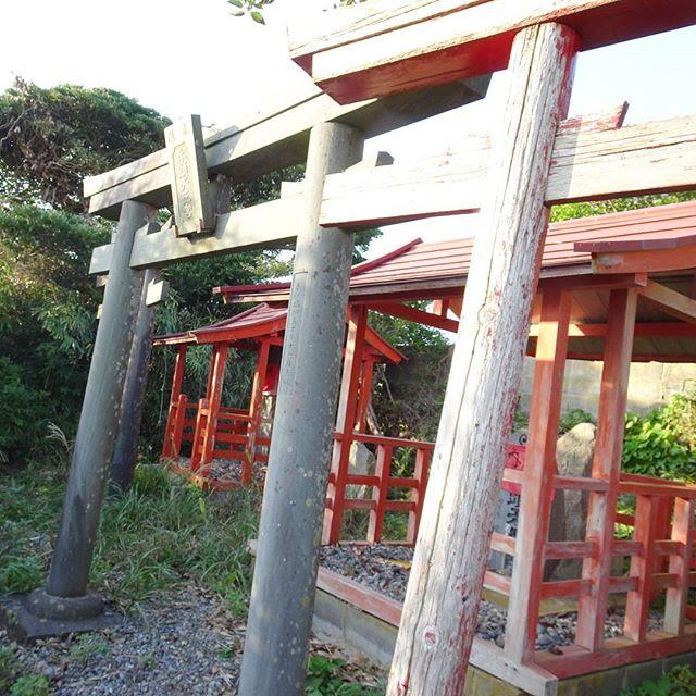 宮城県の猫島へ行ってみた!診療所近くの丘を登ると #天王様 エリアがありますよ #侍猫さんぽ #猫島