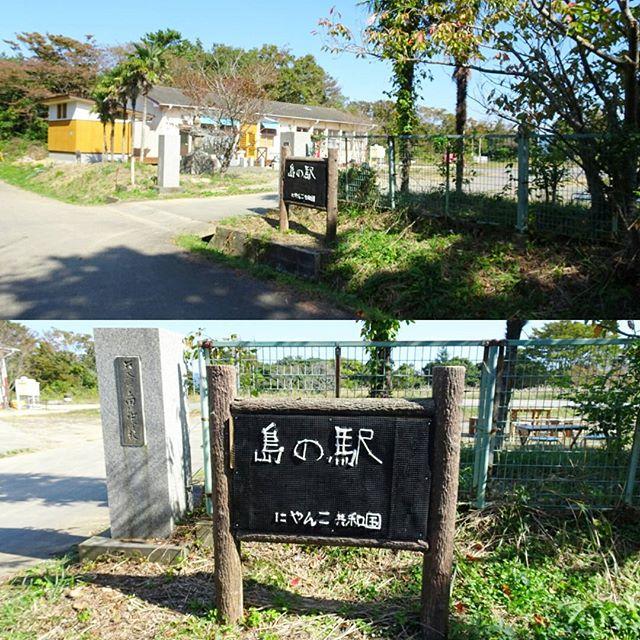 宮城県の猫島へ行ってみた!絶対ここだ! #島の駅 にゃんこ共和国 に間違いない! #侍猫さんぽ #猫島