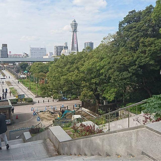天王寺公園ぬけて通天閣へ向かいますよ。新世界でランチですな。 お母様が大阪育ちだからね。とりあえずついて行けばなんとかなる。 #侍猫さんぽ