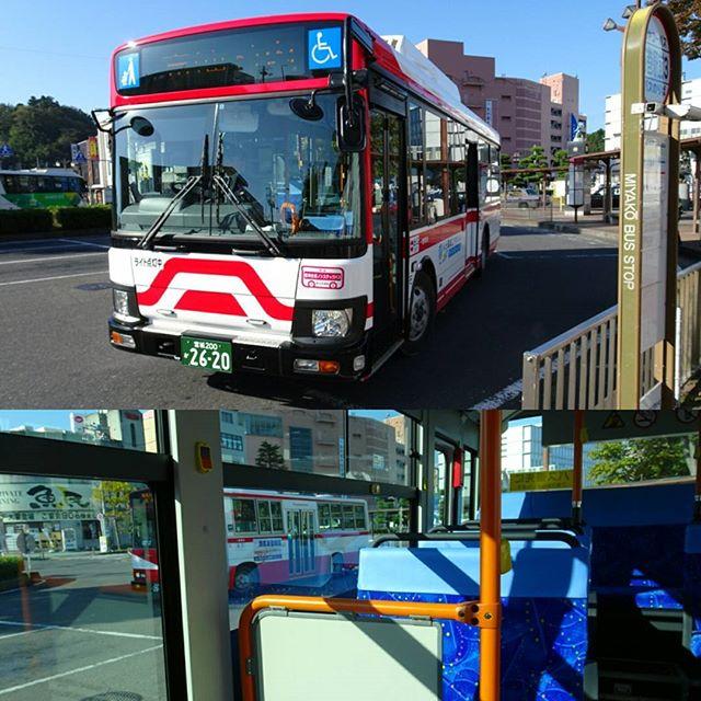 宮城県の猫島へ行ってみた編 石巻駅にバスが来た!大人気スポットだけあって乗客は3人!グッとくるね! #侍猫さんぽ #猫島