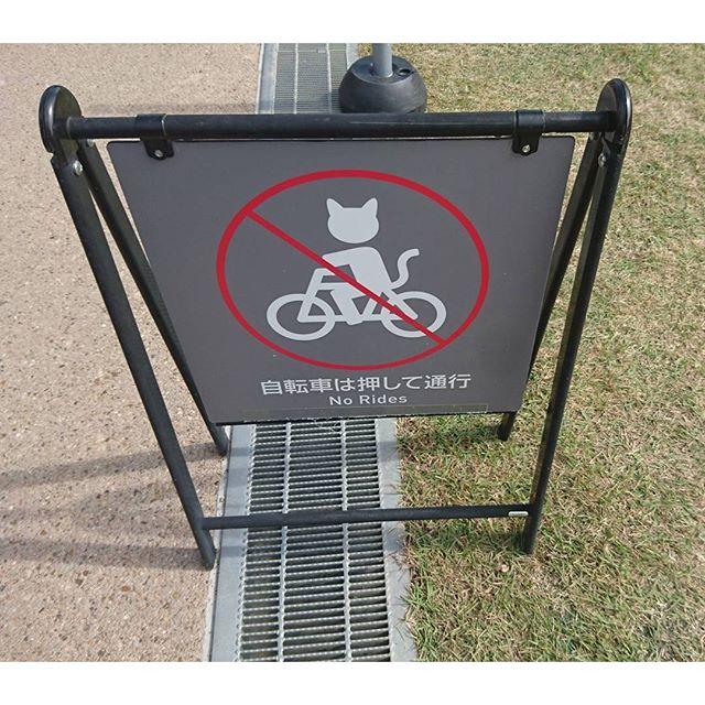 天王寺公園内では #自転車は押して通行 だにゃ! #侍猫さんぽ