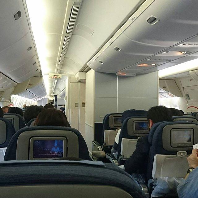 #海外旅行初心者の旅 007 飛行機の中はもう外国ですた。羽田空港だけどさ…ここはもう日本じゃにゃいね…スッチーさんは外国人で英語話しとる。なにいってるかわからにゃいけど、可愛いからいいね。とりあえず現地着くまで西海岸の歩き方みて予習だね。 #losangeles