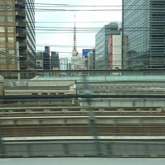 侍猫さんの夏休み #002 東京駅をデッパツ!!とりあえず東京タワーですよね。新幹線は東京駅からのらないと自由席で座れないね。姫路の名物ってなんだろか?Google先生に聞いたところ、穴子が有名らしい。何でだ??瀬戸内海は穴子が多いのかな?駅前にたい焼きやもあったからそれを食べないとね!あとは、神戸牛も食べたいし、おでんも有名みたい。姫路城では抹茶をのまなきゃだし!駅周辺のパワースポット巡りできるかな??…とりあえず、新幹線では寝るかな。#旅行 #新幹線 #東京 #trip #travel #japan #tokyo #東京タワー