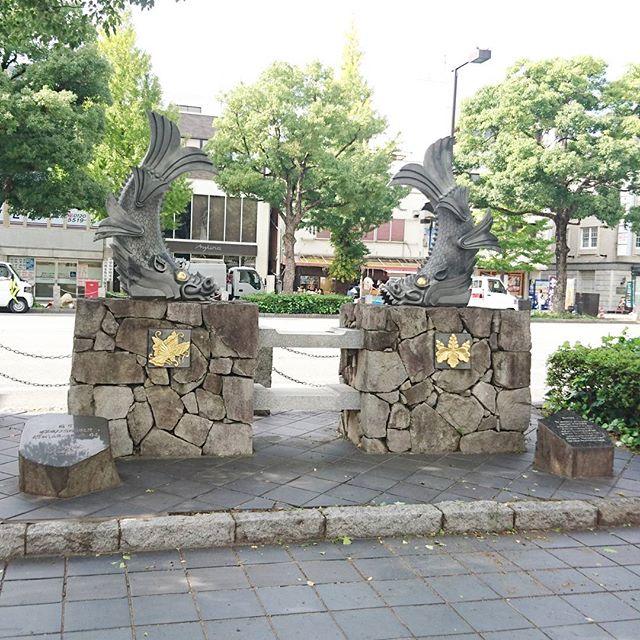 侍猫さんの夏休み #005 姫路駅から城に向かう途中には城テンションを盛り上げる仕掛けがたくさんあるよ!しゃちほこもあるね。駅からでるとすぐ目の前に姫路城見えるから迷わず行けるね。城まですげえ広い道なんだよ。#姫路駅 #姫路 #姫路城 #風景 #城 #japan #trip #travel #castle #しゃちほこ