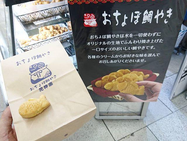 #たい焼き部 #京都 #おちょぼ鯛やき 京都タワーから新幹線改札に向かう途中に駅地下にあった鯛焼きだね。小さいやつ。暑くて食欲無いけど見つけたら食べるのがルール。普通の冷めた鯛焼きの味だね。熱くないから食べやすいよ。夏よう?