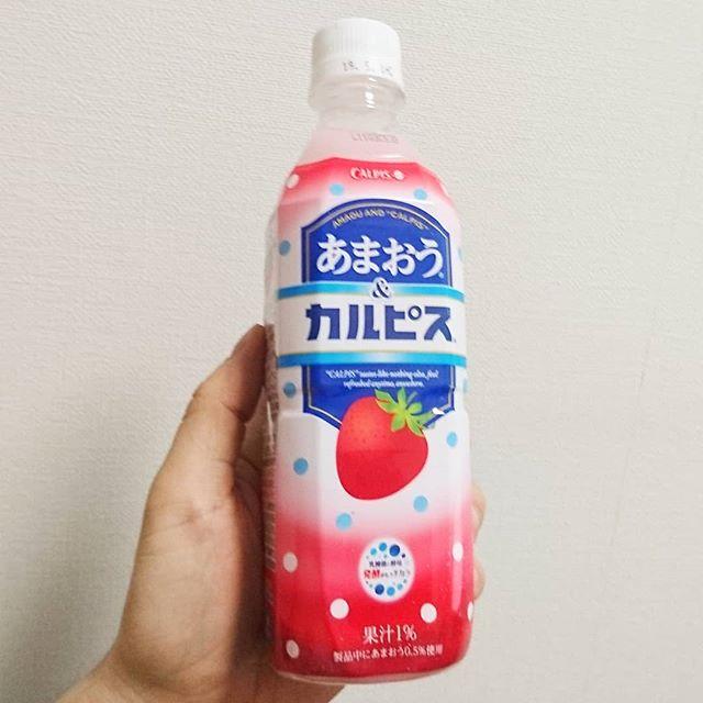 #いちご牛乳クラブ #あまおうカルピス #カルピス 毎年冬になるとでるやつかな?カルピスのわりにはスッキリ苺テイストだね。 #イチゴオレ #いちごオレ #いちご牛乳 #イチゴ牛乳 #苺牛乳 #牛乳 #スイーツ #メソギア派 #銀魂 #糖分 #strawberrymilk
