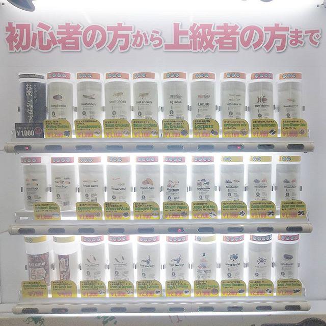 #昆虫食 の自動販売機見つけた。軽く1000円越えてくるよ。うーん…パフェと同じ値段かぁ… #アメ横センタービル にあるよ。